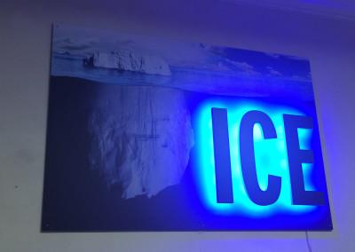 ins,-ice