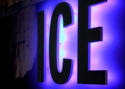 insegna-ice1